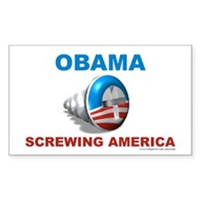 Obama Screwing America, Decal