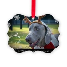 20 Pack-Weimaraner Holiday Quotation Cards