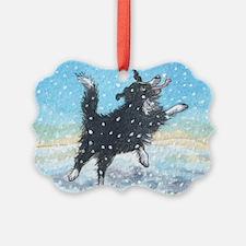 Wheeee Ornament