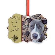StubbyDog Santa Ornament