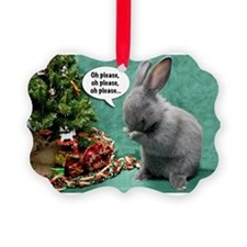 Baby Bunny Praying Christmas Picture Ornament