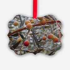 Rain & Olives Ornament