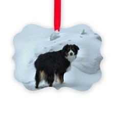 Mr. Syd Picture Ornament