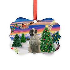TakeOff(1)-Bull Mastiff(#11)Ornament(Pk/20