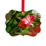 Christmas cactus Picture Frame Ornaments