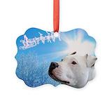 Pit bull Ornaments