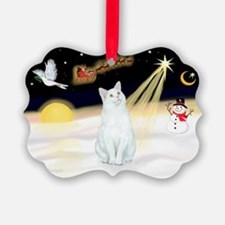 Cute Purebred cat Ornament