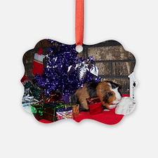Sugar Christmas Cards 6 (Pk of 20)