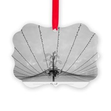 Spider-lights - Ornament