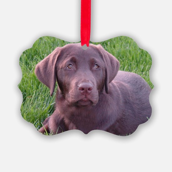 Strong Chocolate Lab Ornament