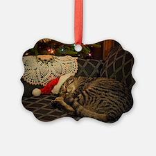 Santa Daisy Ornament