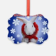 "Bunny ""White Christmas"" Ornament"