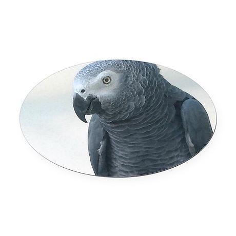 Grey Parrot Oval Car Magnet