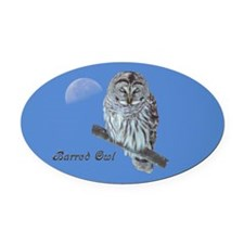 Sleepy Owl Oval Car Magnet