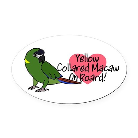 Yellow Collared Macaw On Board Oval Car Magnet