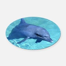 Serenity Dolphin Oval Car Magnet