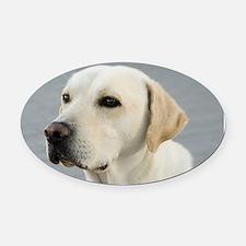Labrador Oval Car Magnet