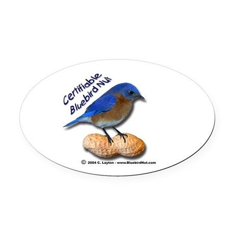 The New Bluebird Nut Oval Car Magnet