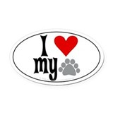Polydactyl cat Car Magnets