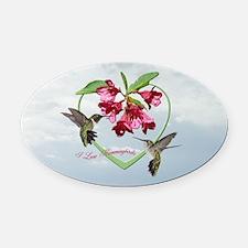 I love hummingbirds Oval Car Magnet