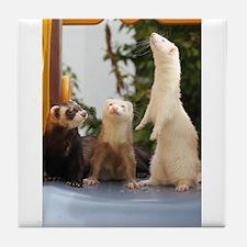 Adorable Trio Tile Coaster