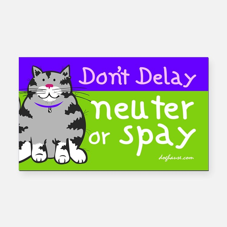 Don't Delay (Cat) - Neuter or Spay Rectangle Car M