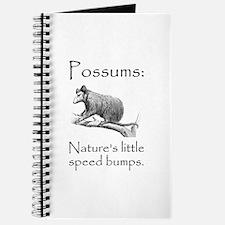 Possum Speed Bump.png Journal