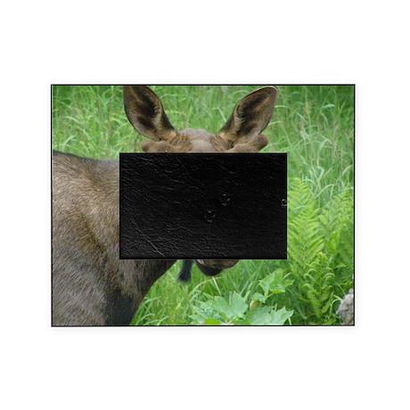 P6220028 Bull #03.JPG Picture Frame