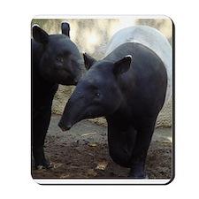 Two Malayan Tapirs Mousepad