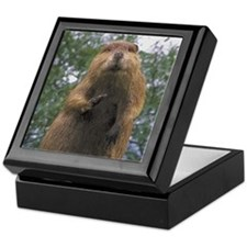 Cute Beaver Keepsake Box
