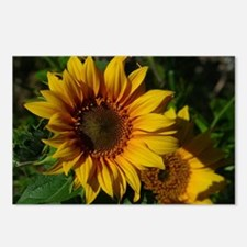 Sunny Sunflower Postcards (Package of 8)