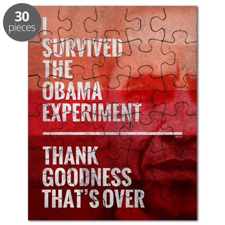 The Obama Experiment Puzzle