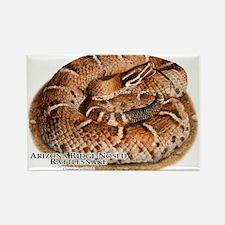 Arizona Ridge-Nosed Rattlesnake Rectangle Magnet