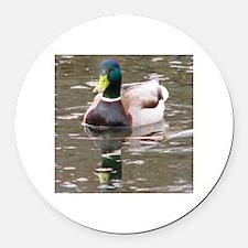 Mallard On Scudder Pond Round Car Magnet