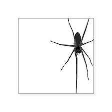 Creeping Spider Square Sticker