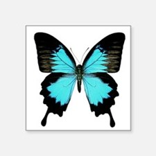 Ulysses Swallowtail Butterfly Square Sticker