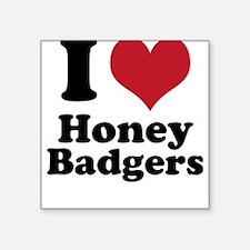 I Heart Honey Badgers