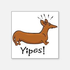 Yipes Dachshund Square Sticker