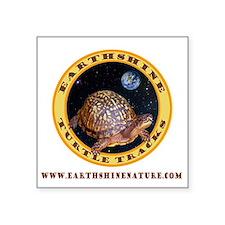 Turtle Tracks Square Sticker