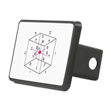 cubeofspace_1043.jpg Hitch Cover