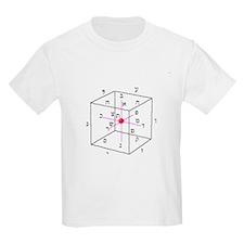 cubeofspace_1043.jpg T-Shirt
