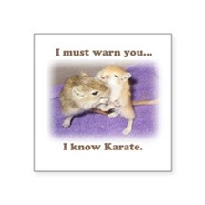 I know karate Square Sticker