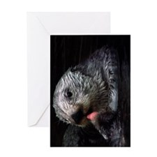 A Sea Otter cleaning himself Greeting Card