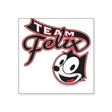 Team Felix Square Sticker