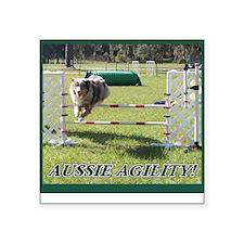 Aussie Agility Square Sticker