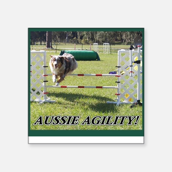 Aussie Agility Square Sticker