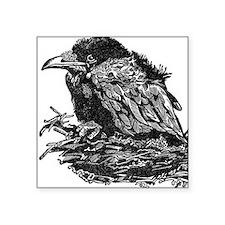Women's Baby Raven Square Sticker