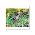 Irises-Am.Hairless T Square Sticker 3