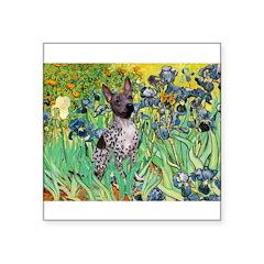 Irises-Am.Hairless T Square Sticker 3