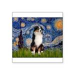Starry - Tri Aussie Shep2 Square Sticker 3
